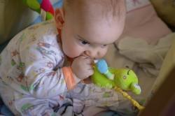 wibrująca zawieszka żabka BabyOno